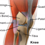 Kustom Wellness orthopedic pain cream